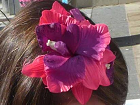 Flower in hair for Peace Day